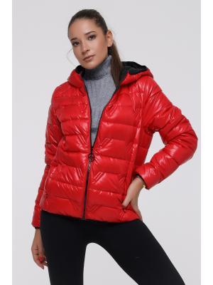 Куртка стеганая с капюшоном LY 203-red