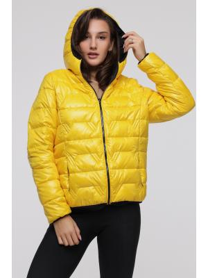 Куртка стеганая с капюшоном LY 203-ye